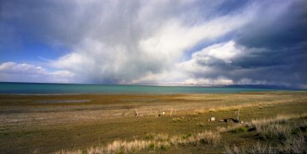 Qinghai Lake 44