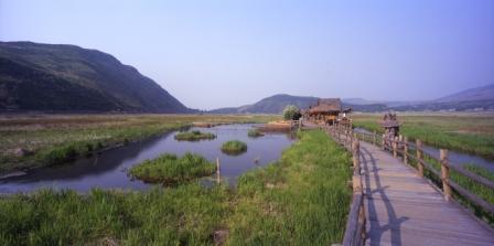 Tengchong wetland