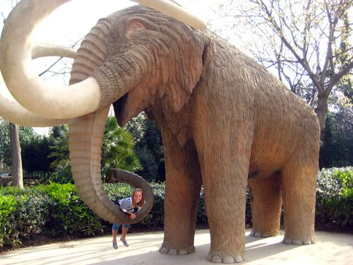 Blog - mammoth  and me