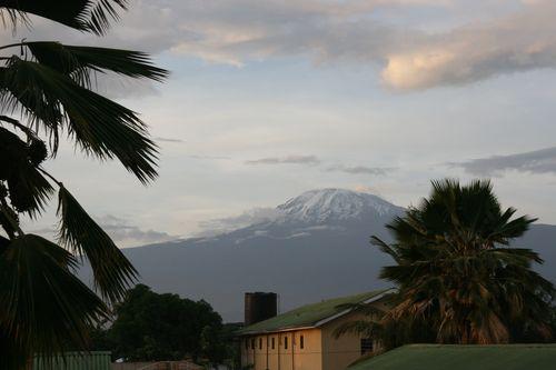 Kilimajaro 1