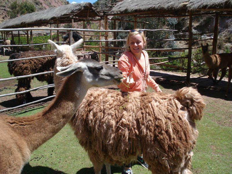 Huaraz Cuzco 222