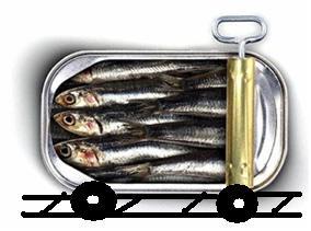 Sardine2