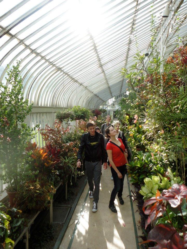 Botanic gardens picture