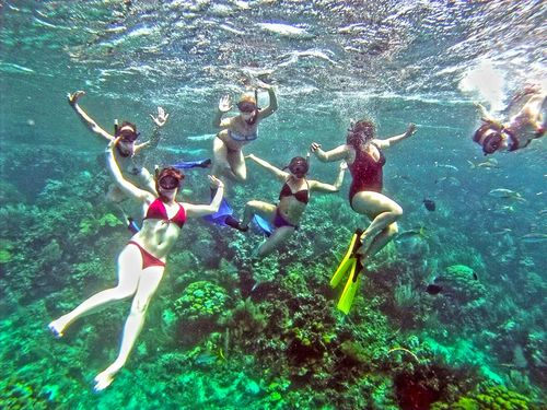 under the sea, students snorkel in a tropical reef surrounding Cayo Arena