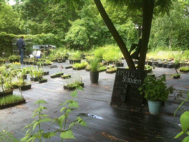Prinzessinnen Garten