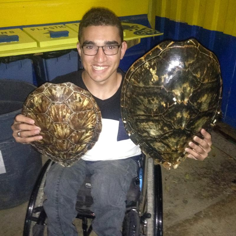 7 josh turtles