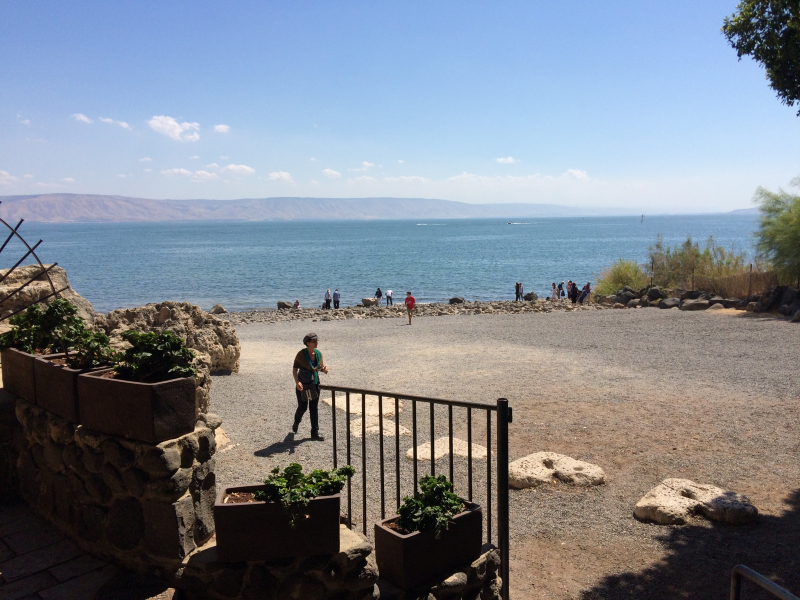 Orientation.Sea of Galilee (1)