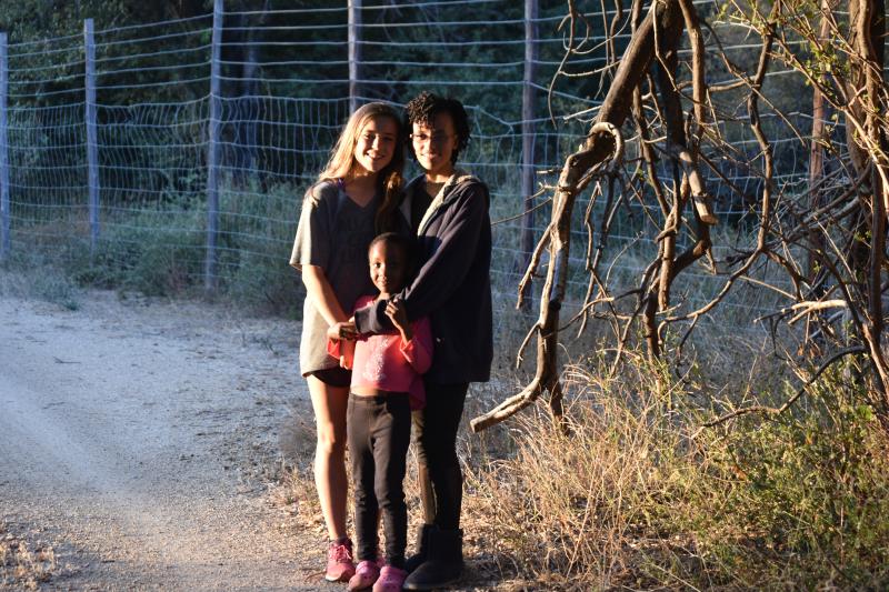 Emily's Botswana 539