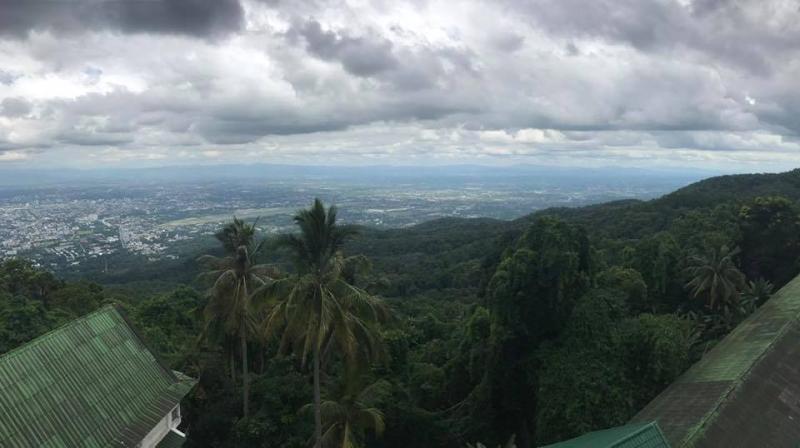 Hike view