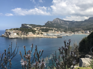 Hiking Excursion Port de Soller