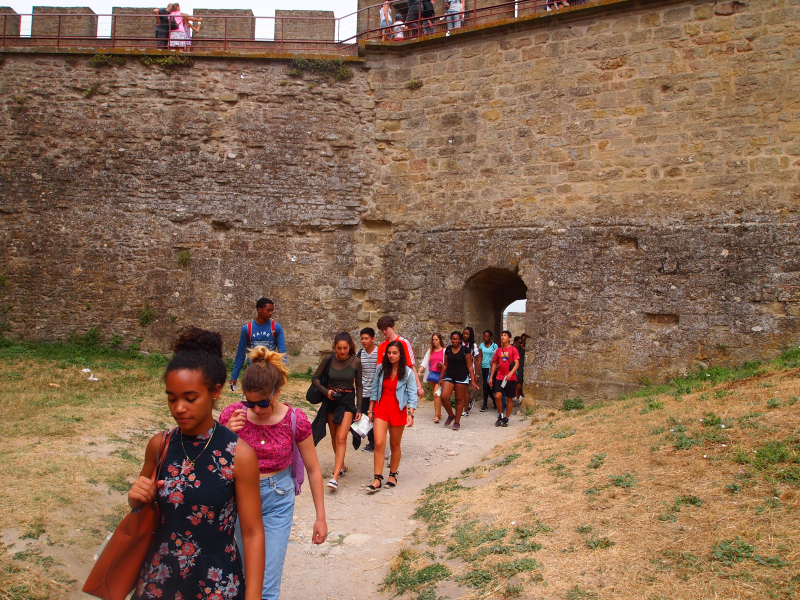 Carcassonne XI