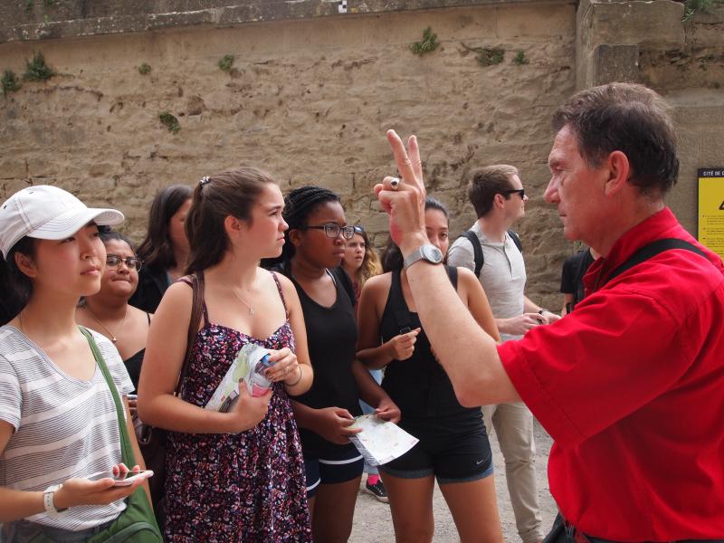 Carcassonne IX