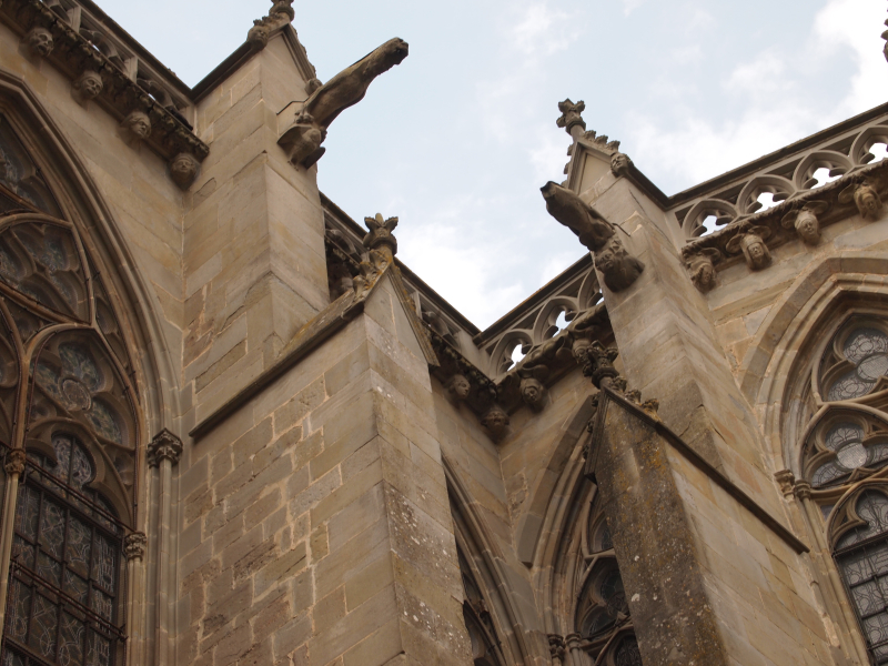Carcassonne XV