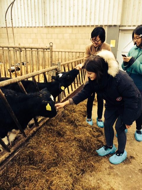 Fun on the farm (2)