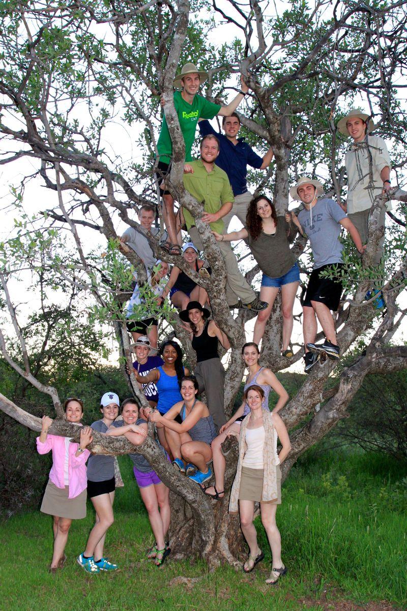 Mokolodi tree lovers