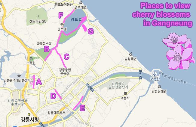 Gangneung Map