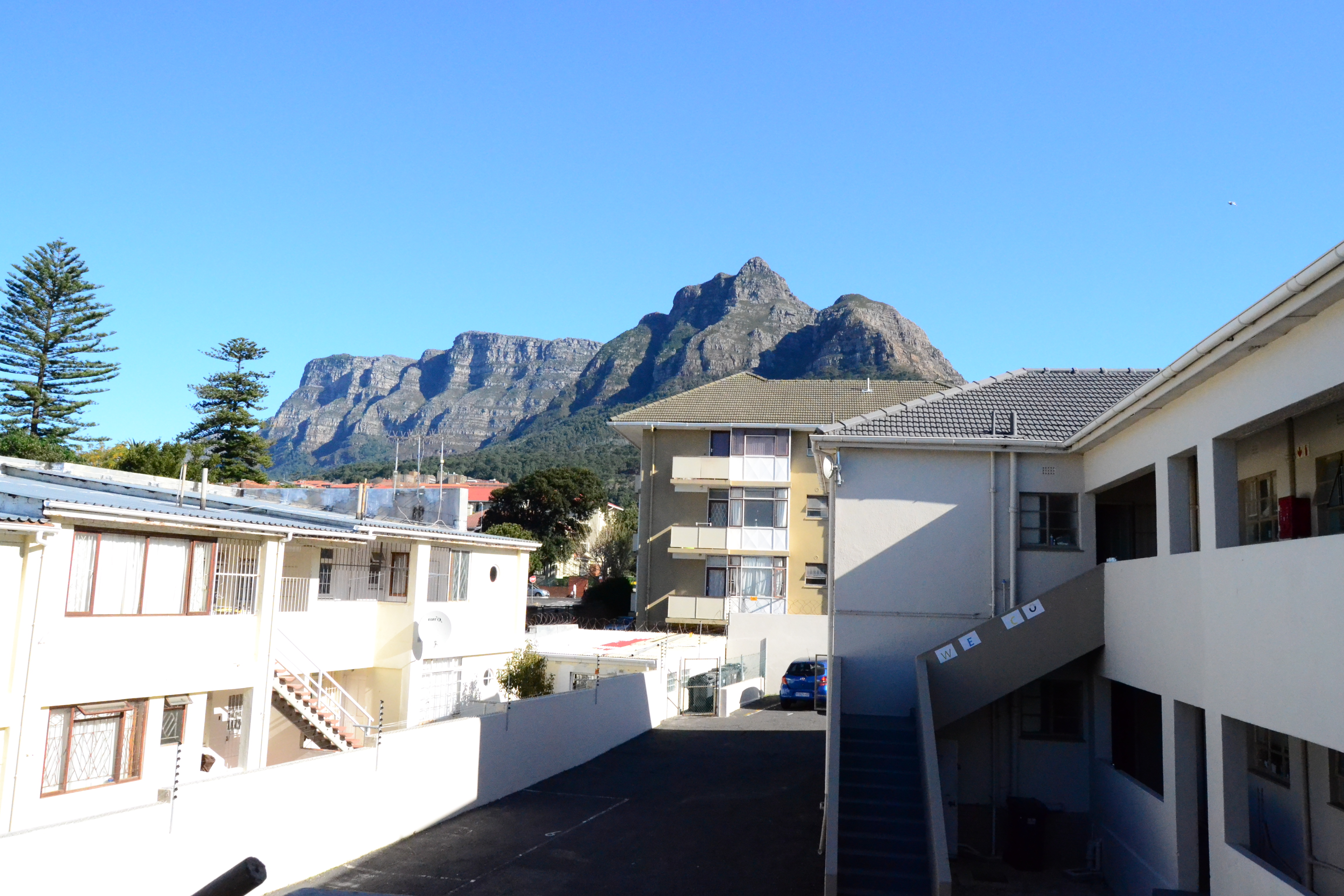 Study Abroad in South Africa Blog Cape Town Arts and Sciences
