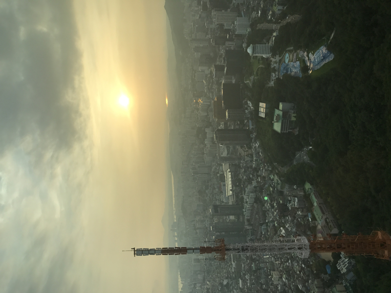 N. Seoul Tower View 3