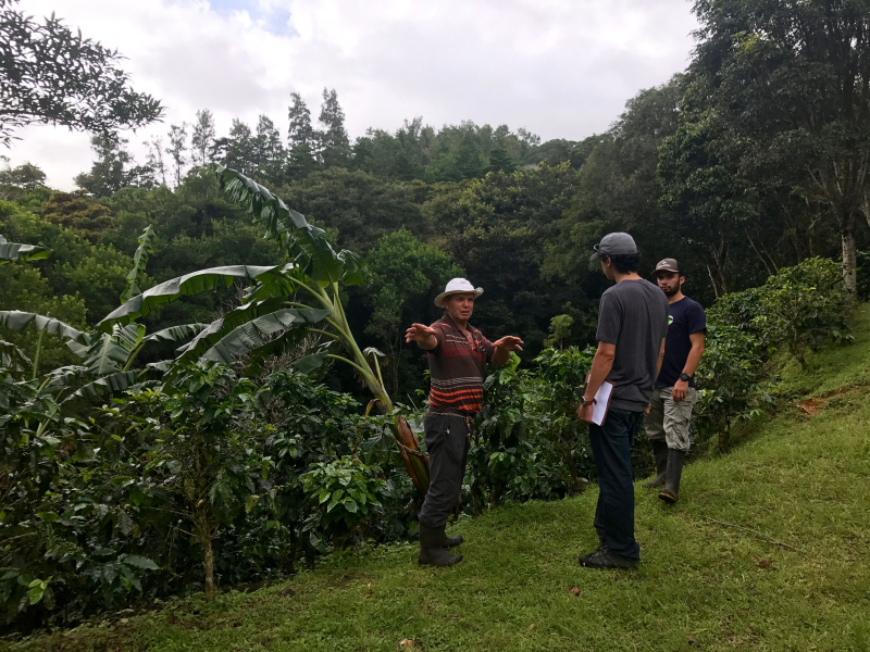 On LIFE farm in Monteverde