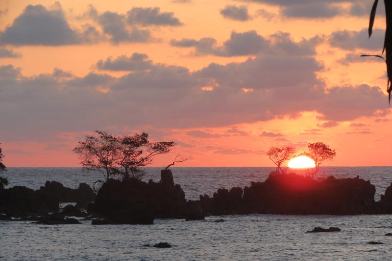 Sunset(Llorona)
