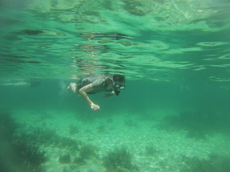 MallorySnorkeling(Bocas)
